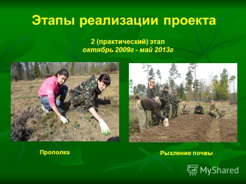Прополка Рыхление почвы Этапы реализации проекта 2 (практический) этап октябрь 2009г - май 2013г