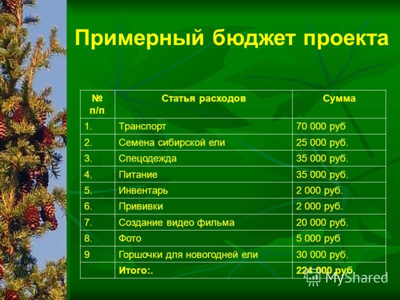 п/п Статья расходовСумма 1.Транспорт70 000 руб 2.Семена сибирской ели25 000 руб. 3.Спецодежда35 000 руб. 4.Питание35 000 руб. 5.Инвентарь2 000 руб. 6.Прививки2 000 руб. 7.Создание видео фильма20 000 руб. 8.Фото5 000 руб 9Горшочки для новогодней ели30