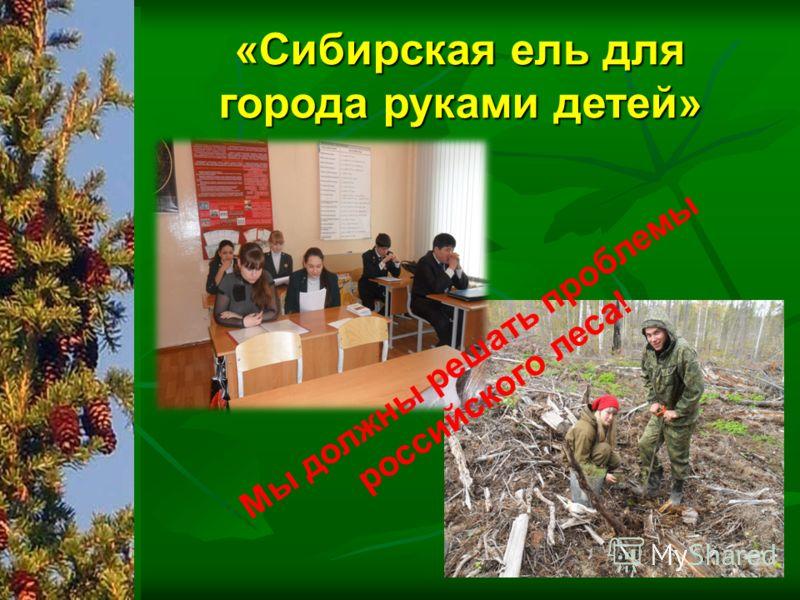 Мы должны решать проблемы российского леса! «Сибирская ель для города руками детей»