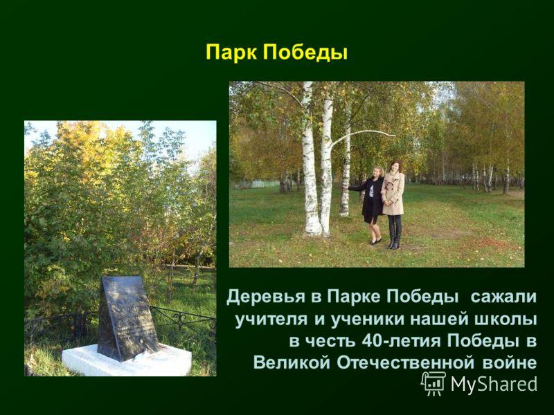 Парк Победы Деревья в Парке Победы сажали учителя и ученики нашей школы в честь 40-летия Победы в Великой Отечественной войне