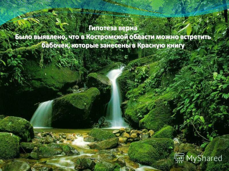 Гипотеза верна Было выявлено, что в Костромской области можно встретить бабочек, которые занесены в Красную книгу