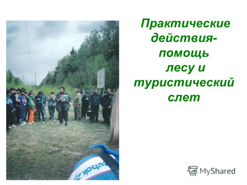 Практические действия- помощь лесу и туристический слет