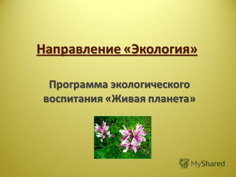 Направление «Экология» Программа экологического воспитания «Живая планета»