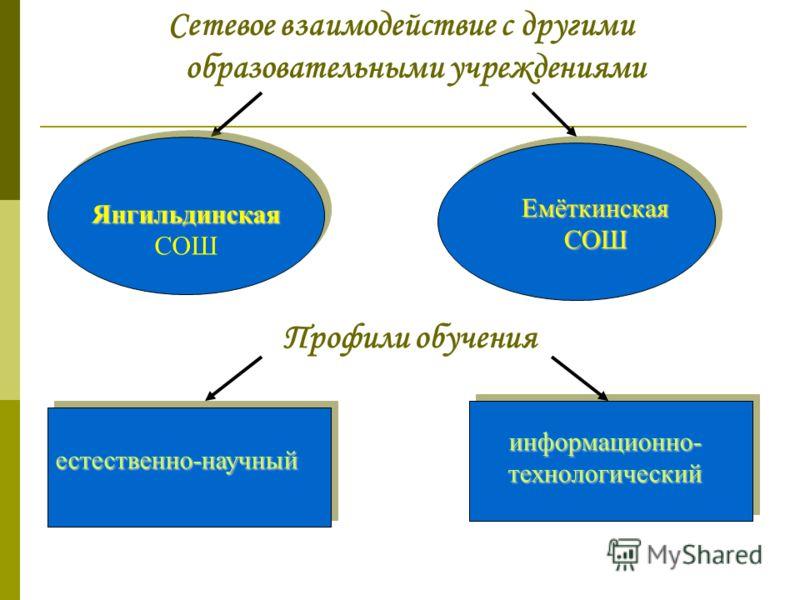 Сетевое взаимодействие с другими образовательными учреждениями Янгильдинская Янгильдинская СОШ Емёткинская СОШ информационно- технологический естественно-научный Профили обучения