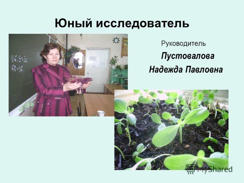 Юный исследователь Руководитель Пустовалова Надежда Павловна