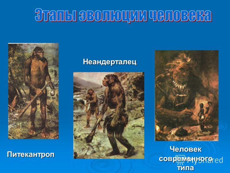 В. Помазов «Не труд, не ум - Раскаянье и стыд Подняли с четверенек Человека.»