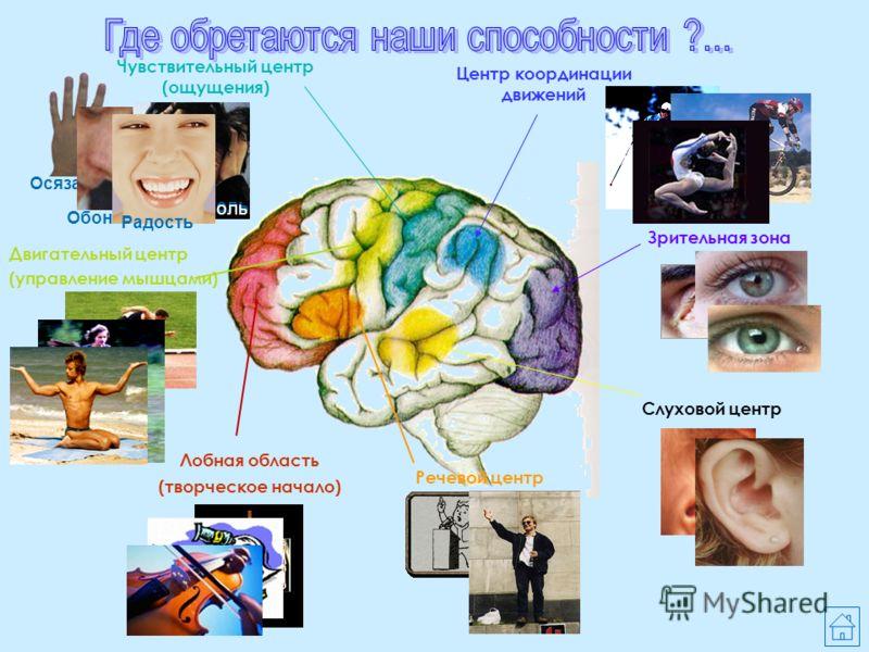 Биология и психология Познание таинств человеческой души невозможно без знаний анатомо- физиологических особенностей головного мозга. А изучение таких тем, как «Рефлексы», «Высшая нервная деятельность человека», «Поведение» невозможно без знаний псих