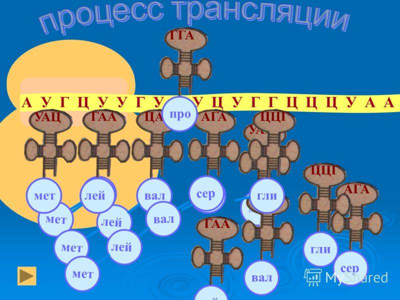 Темновые реакции НАДФ. Н АТФ цикл Кальвина 6 глюкоза С 6 Н 12 О 6 СО 2 крахмал аминокислоты жиры и др.