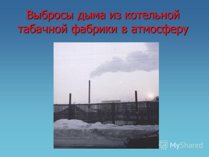Выбросы дыма из котельной табачной фабрики в атмосферу