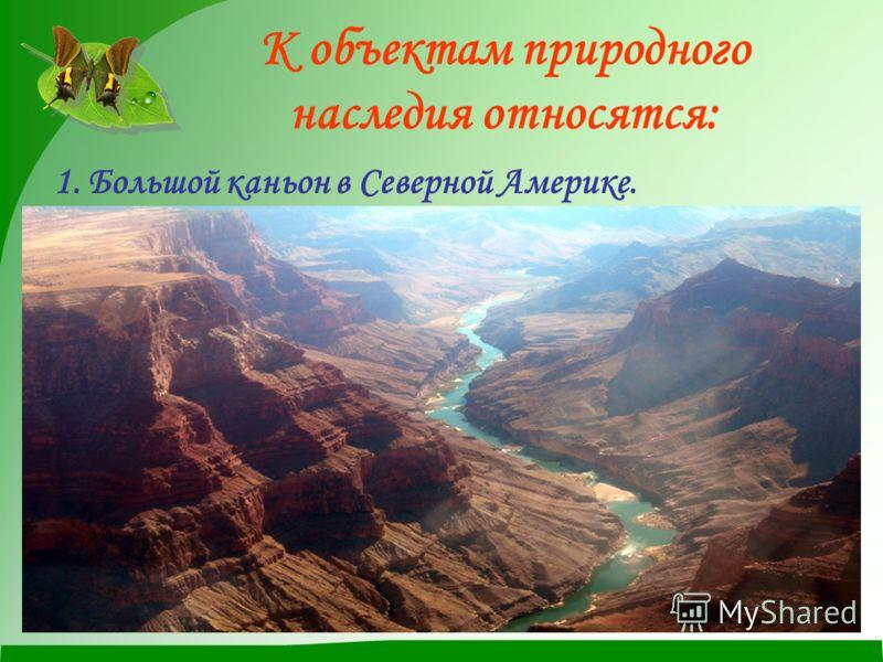 К объектам природного наследия относятся: 1. Большой каньон в Северной Америке.