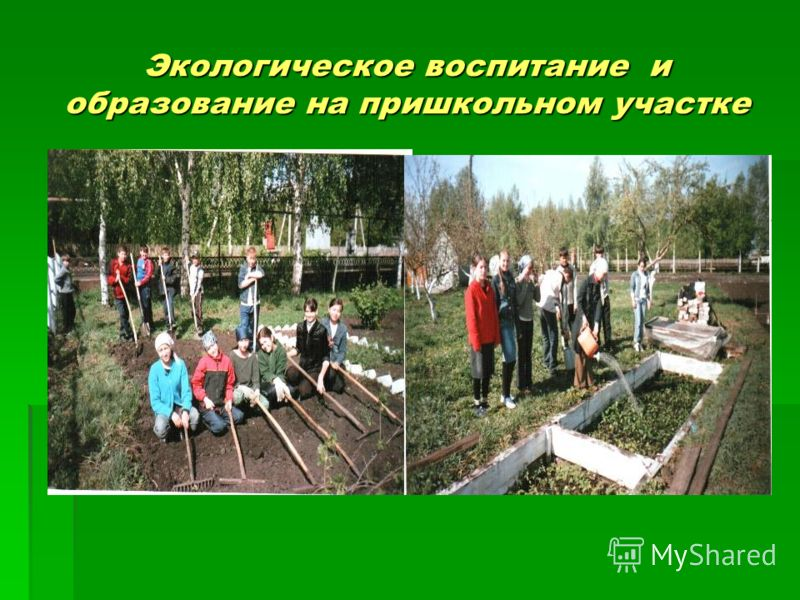 Экологическое воспитание и образование на пришкольном участке