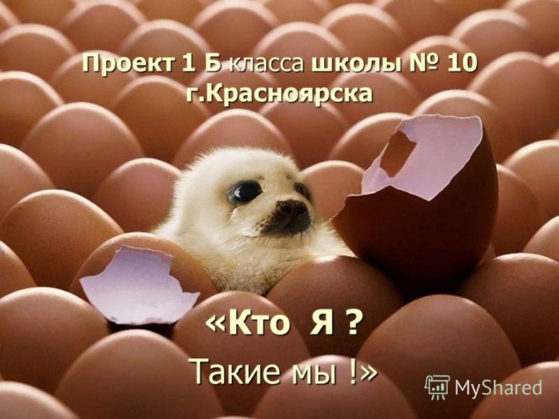 Проект 1 Б класса школы 10 г.Красноярска «Кто Я ? Такие мы !»