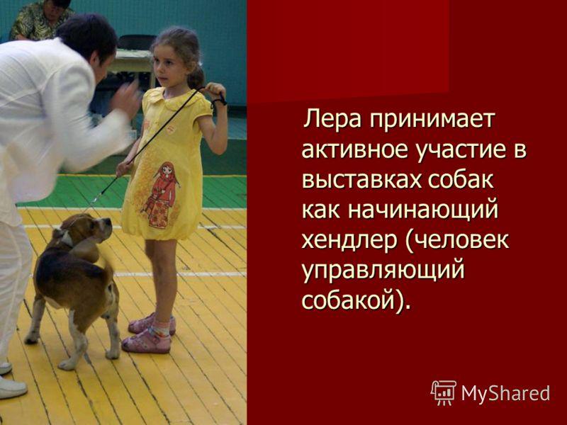 Лера принимает активное участие в выставках собак как начинающий хендлер (человек управляющий собакой). Лера принимает активное участие в выставках собак как начинающий хендлер (человек управляющий собакой).
