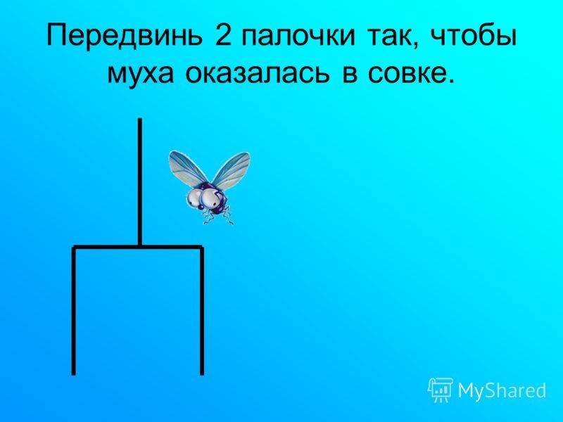 Передвинь 2 палочки так, чтобы муха оказалась в совке.