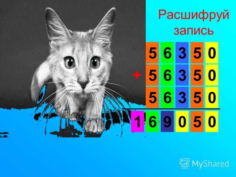 Расшифруй запись к о ш к а + к о ш к а к о ш к а с о б а к а 5 5 5 5 5 5 5 6 6 6 6 3 3 3 00 0 0 0 91