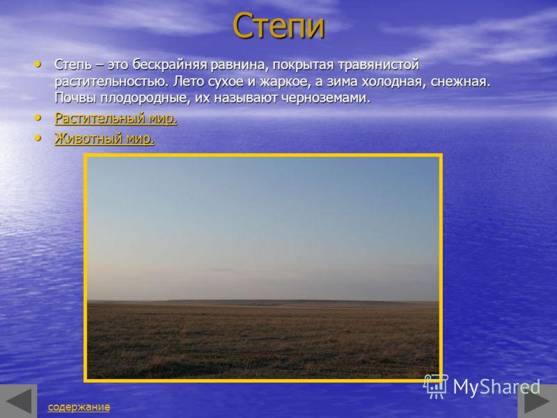 Степи Степь – это бескрайняя равнина, покрытая травянистой растительностью. Лето сухое и жаркое, а зима холодная, снежная. Почвы плодородные, их называют черноземами. Степь – это бескрайняя равнина, покрытая травянистой растительностью. Лето сухое и