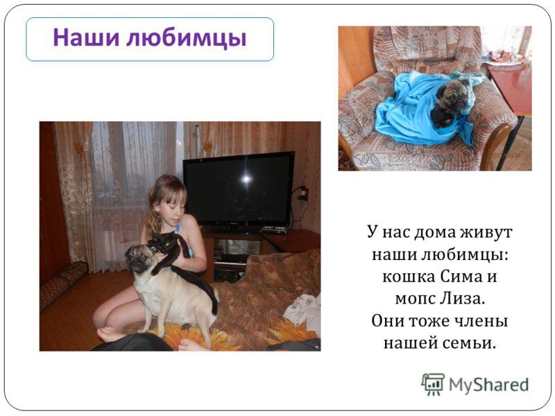 Наши любимцы У нас дома живут наши любимцы : кошка Сима и мопс Лиза. Они тоже члены нашей семьи.