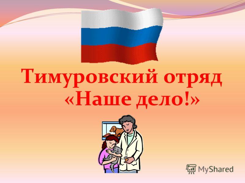 Тимуровский отряд «Наше дело!»