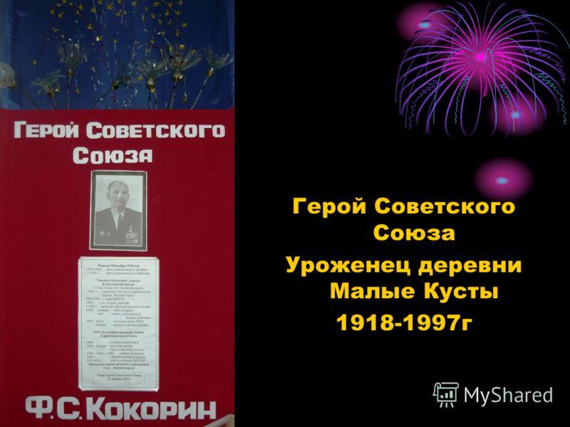 Герой Советского Союза Уроженец деревни Малые Кусты 1918-1997г