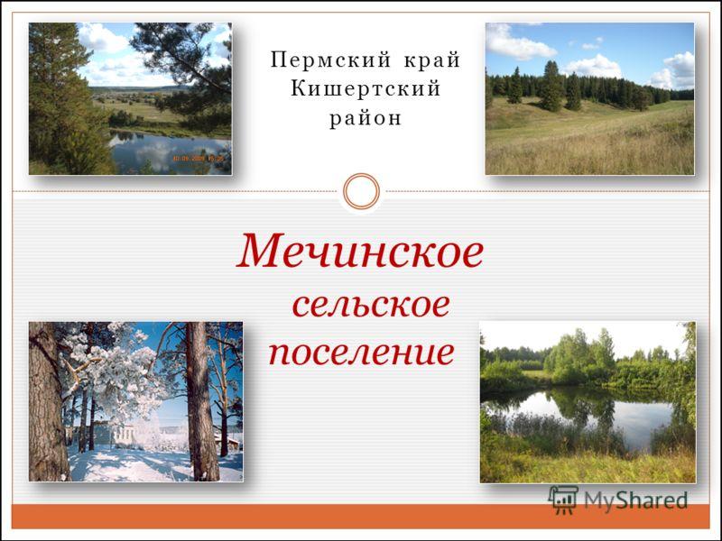 Пермский край Кишертский район Мечинское сельское поселение