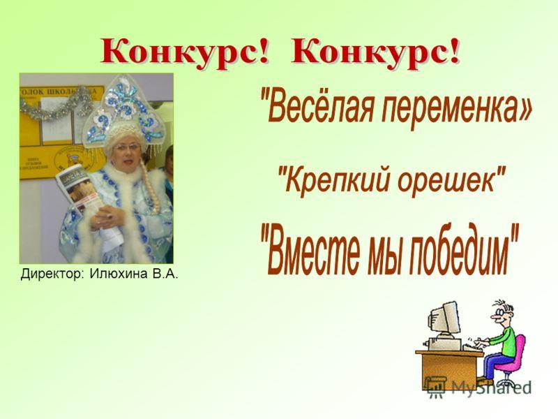 Директор: Илюхина В.А.