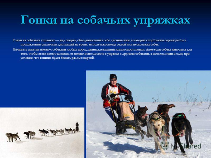 Гонки на собачьих упряжках Гонки на собачьих упряжках вид спорта, объединяющий в себе дисциплины, в которых спортсмены соревнуются в прохождении различных дистанций на время, используя помощь одной или нескольких собак. Начинать занятия можно с собак
