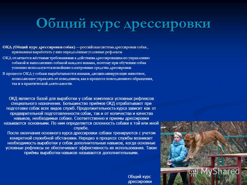 Общий курс дрессировки ОКД (Общий курс дрессировки собак) российская система дрессировки собак, призванная выработать у них определённые условные рефлексы ОКД отличается жёсткими требованиями к действиям дрессировщика по управлению собакой и выполнен