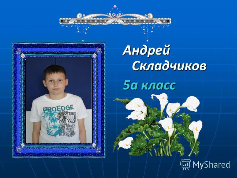 Андрей Складчиков 5а класс