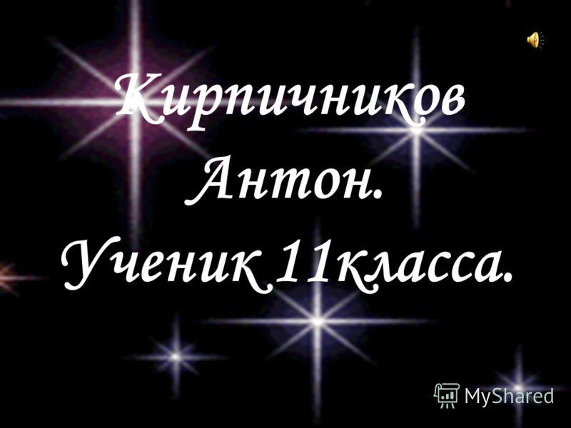 Кирпичников Антон. Ученик 11класса.