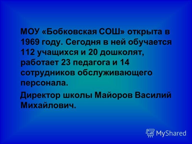 МОУ «Бобковская СОШ» открыта в 1969 году. Сегодня в ней обучается 112 учащихся и 20 дошколят, работает 23 педагога и 14 сотрудников обслуживающего персонала. Директор школы Майоров Василий Михайлович.