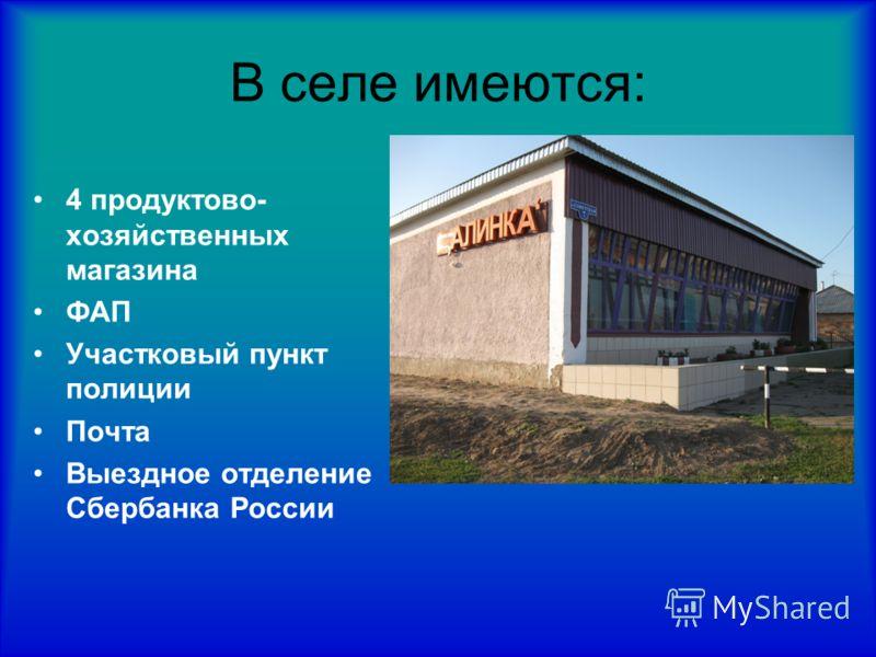 В селе имеются: 4 продуктово- хозяйственных магазина ФАП Участковый пункт полиции Почта Выездное отделение Сбербанка России