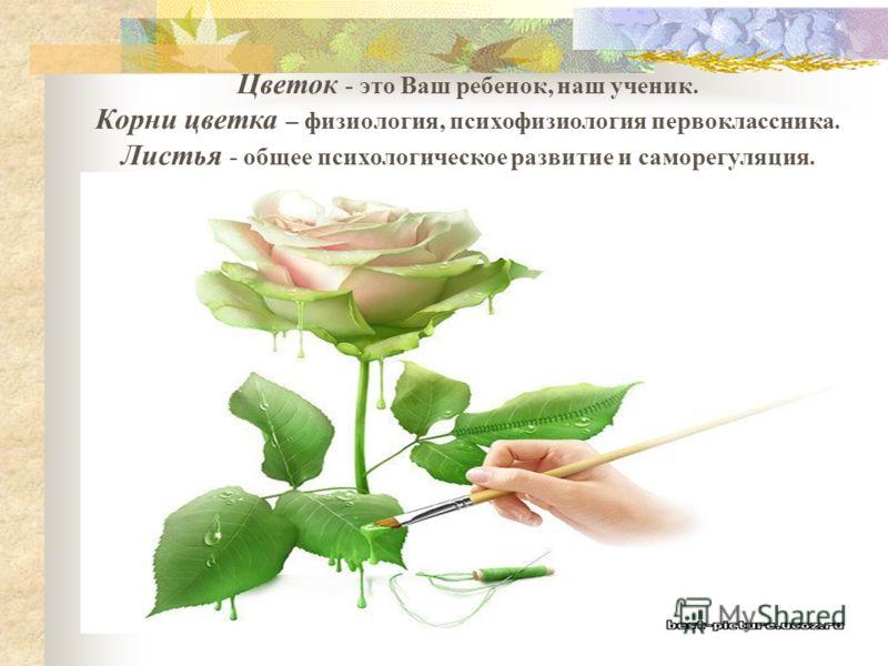 Цветок - это Ваш ребенок, наш ученик. Корни цветка – физиология, психофизиология первоклассника. Листья - общее психологическое развитие и саморегуляция.