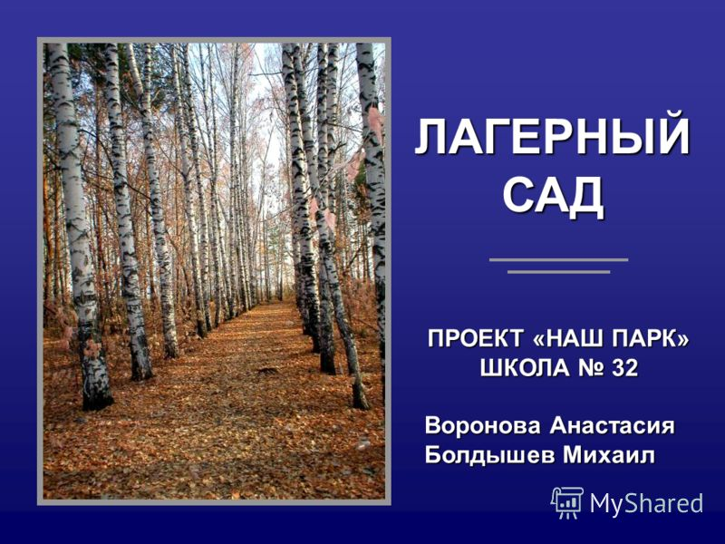 ЛАГЕРНЫЙСАД ПРОЕКТ «НАШ ПАРК» ШКОЛА 32 Воронова Анастасия Болдышев Михаил
