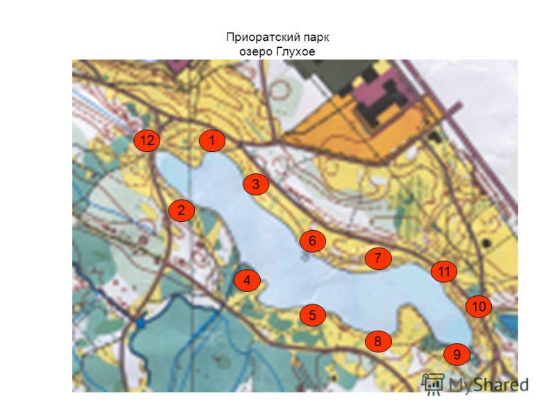 Приоратский парк озеро Глухое 1 5 12 2 10 3 4 11 8 6 9 7