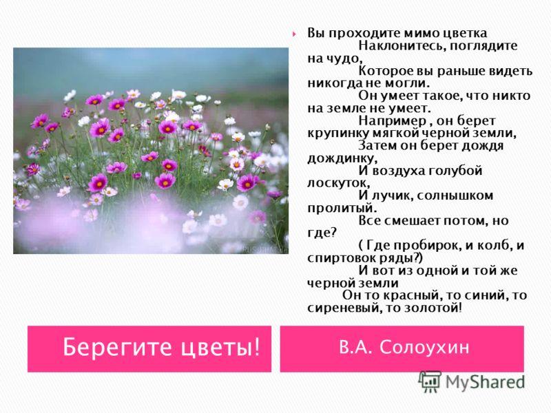 «Весной день год кормит. День прозевал – урожай потерял. Вспашешь в срок, посеешь в срок – будет урожай высок. С агротехникой лад – урожай богат. От доброго семени – добрый всход Каково семя, таково и племя По семенам и всходы