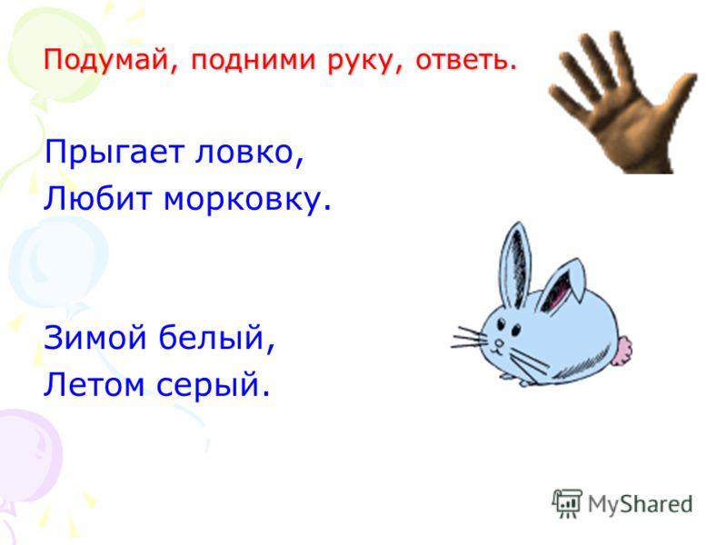 Прыгает ловко, Любит морковку. Зимой белый, Летом серый. Подумай, подними руку, ответь.
