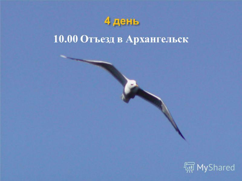 4 день 10.00 Отъезд в Архангельск