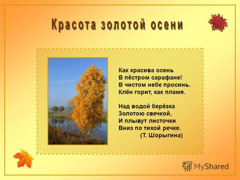 Как красива осень В пёстром сарафане! В чистом небе просинь. Клён горит, как пламя. Над водой берёзка Золотою свечкой, И плывут листочки Вниз по тихой речке. (Т. Шорыгина)