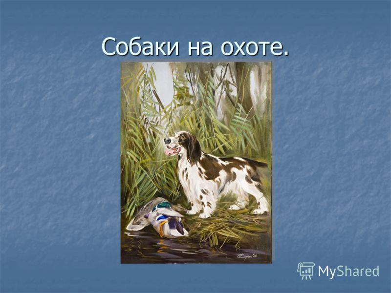 Собаки на охоте.