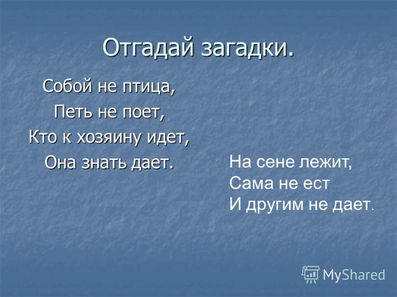 Отгадай загадки. Собой не птица, Петь не поет, Кто к хозяину идет, Она знать дает. На сене лежит, Сама не ест И другим не дает.