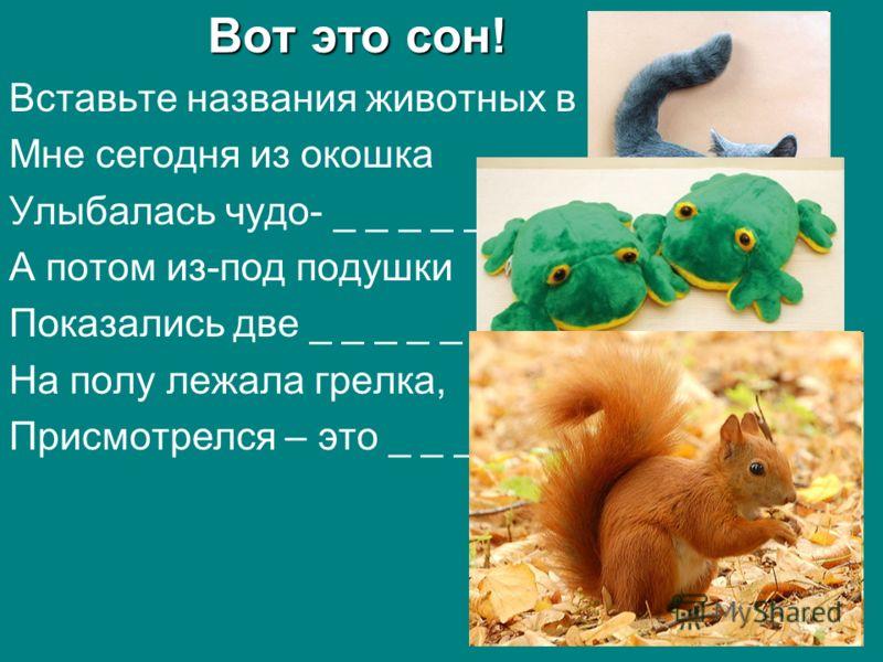 Вот это сон! Вставьте названия животных в стих. Мне сегодня из окошка Улыбалась чудо- _ _ _ _ _ А потом из-под подушки Показались две _ _ _ _ _ _ _ На полу лежала грелка, Присмотрелся – это _ _ _ _ _.