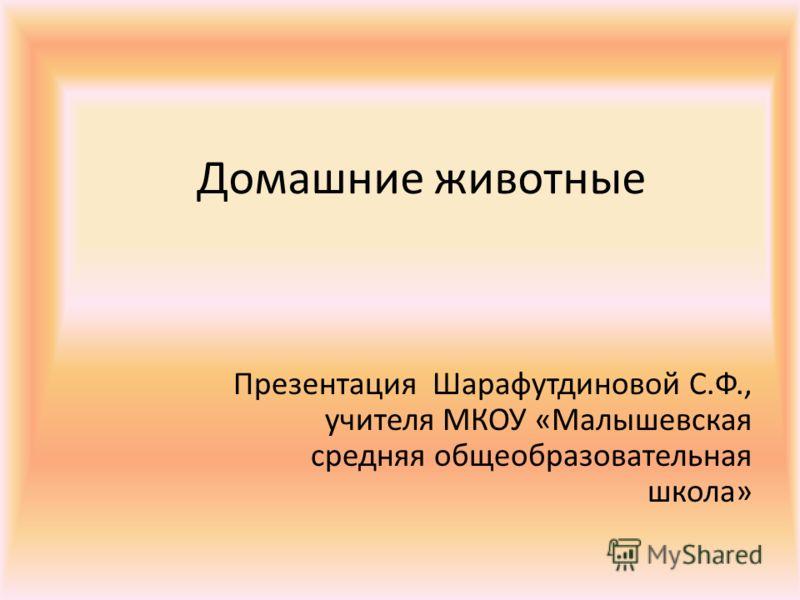Домашние животные Презентация Шарафутдиновой С.Ф., учителя МКОУ «Малышевская средняя общеобразовательная школа»