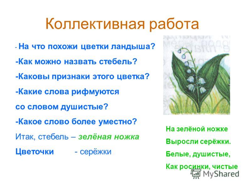 Коллективная работа - На что похожи цветки ландыша? -Как можно назвать стебель? -Каковы признаки этого цветка? -Какие слова рифмуются со словом душистые? -Какое слово более уместно? Итак, стебель – зелёная ножка Цветочки - серёжки На зелёной ножке Вы