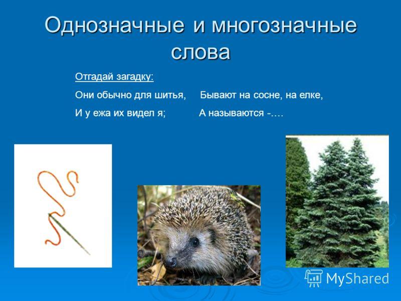 Однозначные и многозначные слова Отгадай загадку: Они обычно для шитья, Бывают на сосне, на елке, И у ежа их видел я; А называются -….