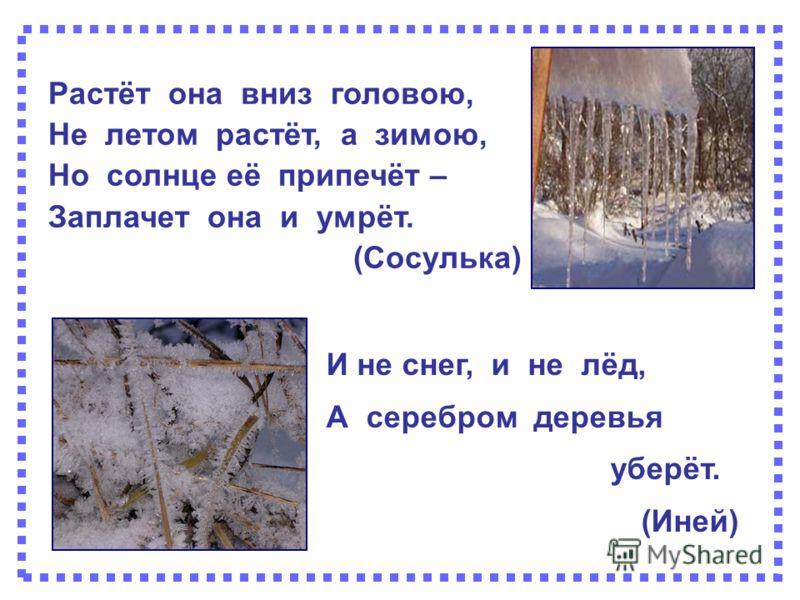 Растёт она вниз головою, Не летом растёт, а зимою, Но солнце её припечёт – Заплачет она и умрёт. (Сосулька) И не снег, и не лёд, А серебром деревья уберёт. (Иней)