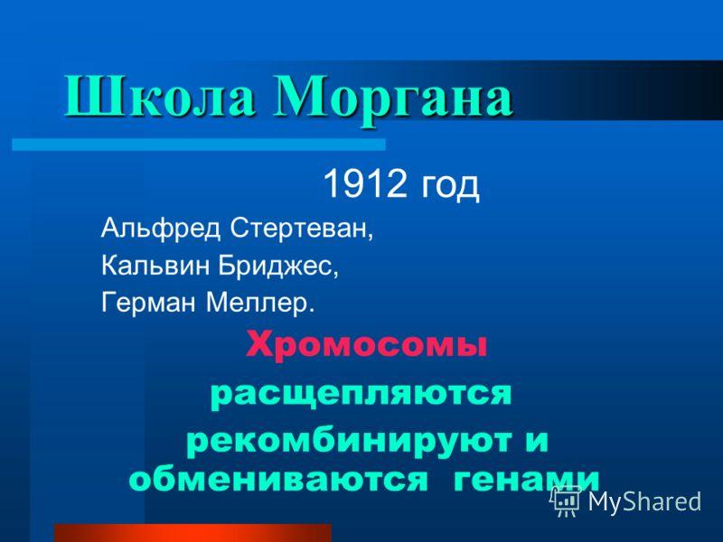 Школа Моргана 1912 год Альфред Стертеван, Кальвин Бриджес, Герман Меллер. Хромосомы расщепляются рекомбинируют и обмениваются генами