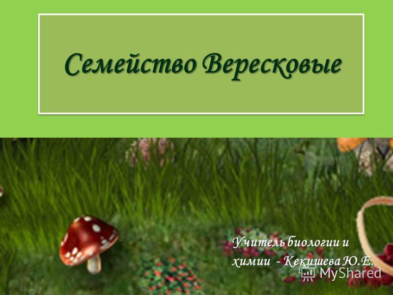 Семейство Вересковые Учитель биологии и химии - Кекишева Ю.Е.