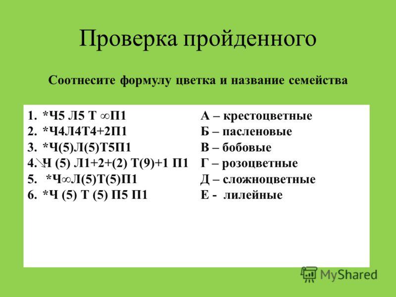 Проверка пройденного Соотнесите формулу цветка и название семейства 1.*Ч5 Л5 Т П1 2.*Ч4Л4Т4+2П1 3.*Ч(5)Л(5)Т5П1 4.Ч (5) Л1+2+(2) Т(9)+1 П1 5. *ЧЛ(5)Т(5)П1 6.*Ч (5) Т (5) П5 П1 А – крестоцветные Б – пасленовые В – бобовые Г – розоцветные Д – сложноцве
