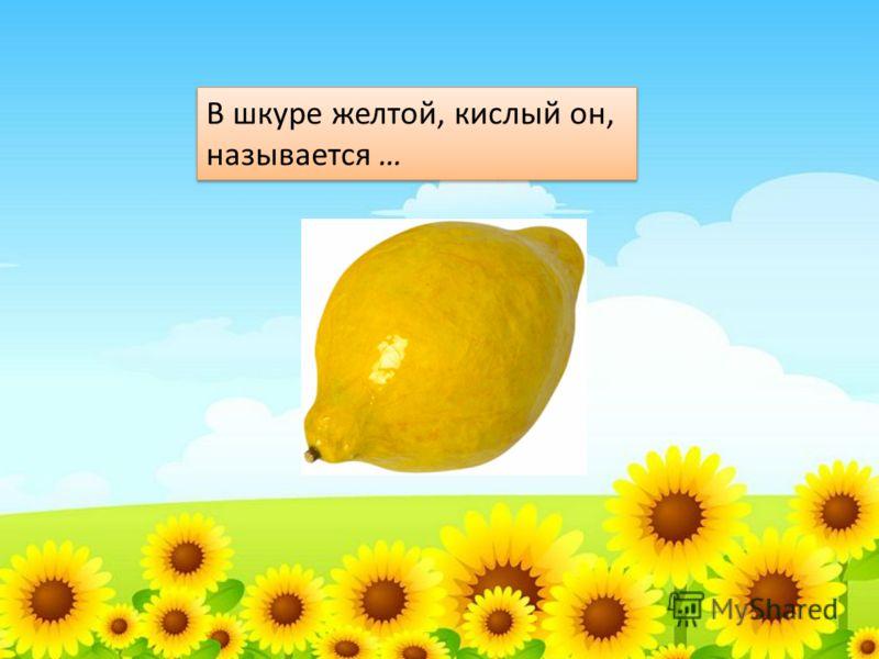 В шкуре желтой, кислый он, называется … В шкуре желтой, кислый он, называется …