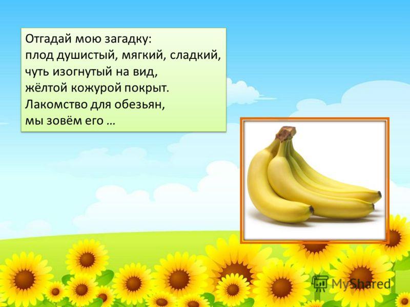 Отгадай мою загадку: плод душистый, мягкий, сладкий, чуть изогнутый на вид, жёлтой кожурой покрыт. Лакомство для обезьян, мы зовём его … Отгадай мою загадку: плод душистый, мягкий, сладкий, чуть изогнутый на вид, жёлтой кожурой покрыт. Лакомство для